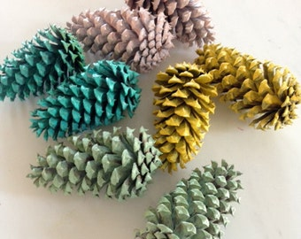painted pine cones 8 spring colors or any color