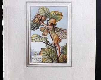 Cicely Mary Barker C1930 Flower Fairy Print. The Hazelnut Fairy