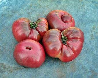 Black Brandywine Heirloom Tomato Seeds Non GMO