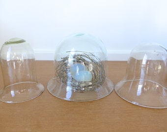 Three glass cloches, display domes, bell jars