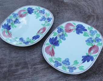 Rare and Gorgeous Set of Two Baker & Co. Virginia Pattern Plates