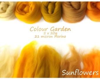 Yellow Merino Shade sets - 21 micron Merino wool - 100g - 3.5oz - 5 x 20g - Colour Garden - SUNFLOWERS