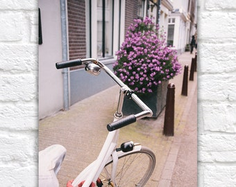 European Travel Photography, Bicycle and Flowers, Purple Flowers, Plum Orchid Purple and White, Lavender, Amsterdam Photo, Bathroom Art