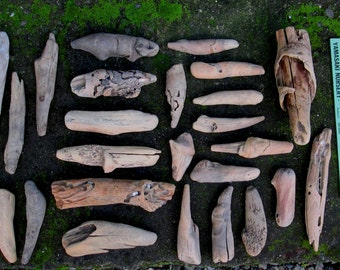 27 Natural Driftwood Pieces + 3 Bonus Pieces - Carving - Craft Supplies - Garden Decor - Home Decor - Taxidermy  DW58