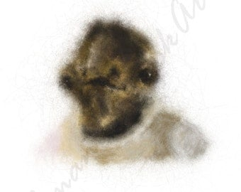 Admiral Ackbar INSTANT DOWNLOAD - Star Wars, father's day, present, digital, it's a trap, Rebel Alliance, geeky gifts, portrait, kitsch