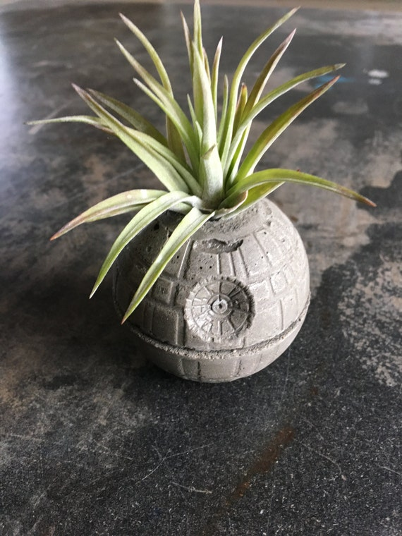 concrete singles & personals Discover recipes, home ideas, style inspiration and other ideas to try.