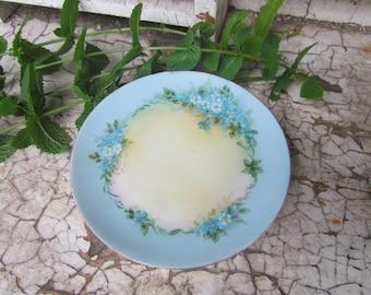 Pretty Blue and Cream Bavaria Plate