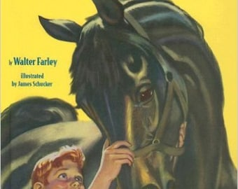 BIG BLACK HORSE - Classic Beginner Version of The Black Stallion