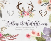 Antlers & Wildflowers  Watercolor  Clipart Files - High Res Transparent PNG - Hand Painted Digital Scrapbook elements - Instant download