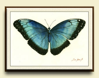 PRINT-Blue Morpho Butterfly -  insect art drawing  print watercolor painting art wall insect Butterflies Art - - Art Print by Juan Bosco