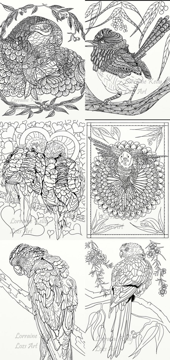 Australian Birds Adult Coloring Book 24 Pages Mandala Art