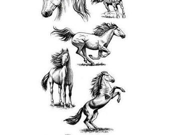Inkadinkado Clear Acrylic Stamp Set - HORSES cc02
