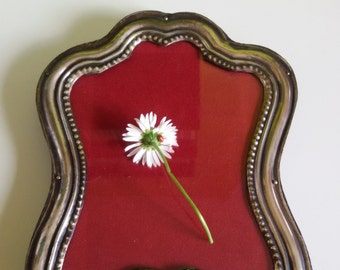 Photo frame in silver 800 - Vintage - '70 - For table
