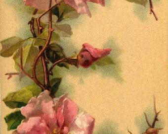 """Vintage Victorian Klein Floral Letter Initial """"E"""" 2"""" x 3"""" Fridge Magnet"""