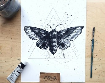 Midnight Moth - Art Print