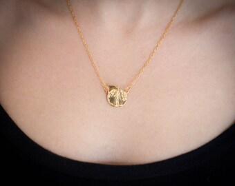 Golden Apple, Eve charm Necklace