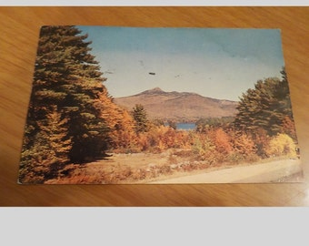 1958 new hampshire's fall foliage Postcard Free Shipping