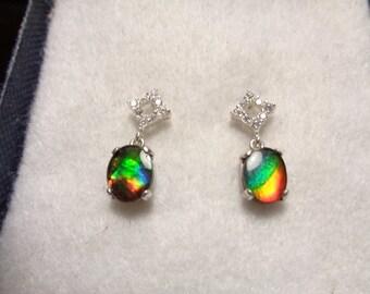 Ammolite  Earrings - Dangles from Pretty CZ Studs