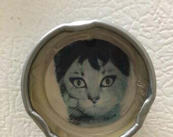 One-of-a-kind, Fancy Kitty Bottle Cap Magnet