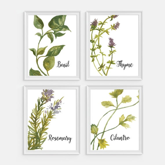 Items Similar To Herbs Art Watercolor Herbs Kitchen Wall