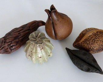 Stoneware Seed Pods, Pottery Still Life, sculpted seeds, centerpiece, home decor, handmade, ceramic, unglazed and glazed, large pods, Set 3