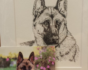 Custom Ink Pet Portrait, 5x7, Matted to 8x11, Head and Shoulders