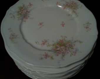 Theodore Haviland Limoges France China Dishes and Platter