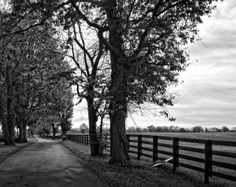 Lexington Back Road
