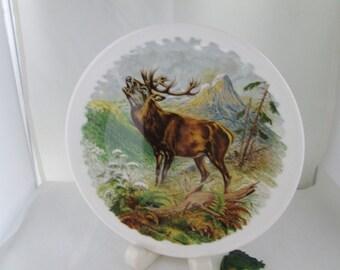 Royal Grafton Bull Elk China Plate Cabin Decor Lodge Decor Man Cave Elk Art Elk Wall plate Bull Elk plate Royal Grafton animal plate
