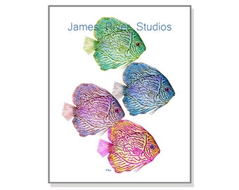Tropical Fish Art Fish Painting Fish Print. Fish Watercolor Fish Wall Decor Fish Wall Art Ocean Art Sea Art Discus Fish Colorful Fish Art.