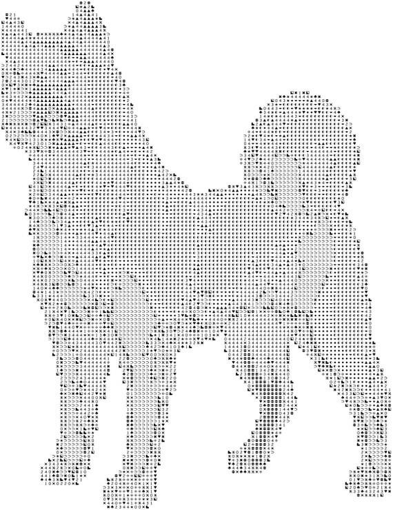 akita dog breed cross stitch pattern graph pattern and