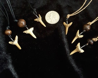 Sand Tigger Shark Tooth Necklace