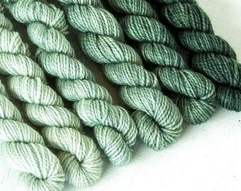 JADEITE 240 yard gradient yarn mini-skein set, American Sock, superwash, merino, fingering weight, sock yarn, gradient, ombre