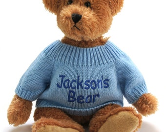 Teddy Bear with a Sweater