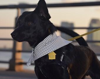 The Snap Dog Bandana in Beige Gingham