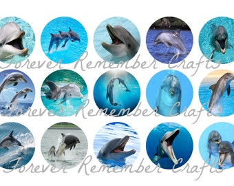 INSTANT DOWNLOAD Dolphins 1 Inch Bottle Cap Image Sheets *Digital Image* 4x6 Sheet With 15 Images