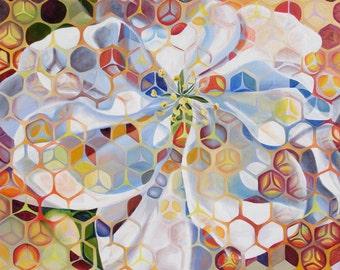 """Alchemy 18""""x18"""" - Giclee print"""