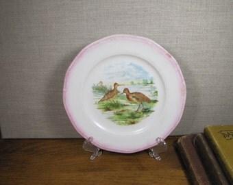 Vintage S. P. Co. Pink Rim Dessert Plate - Shore Birds