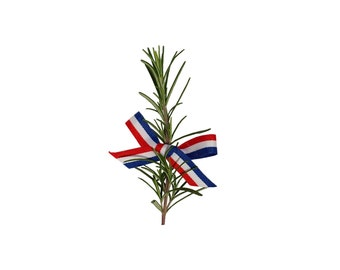Croatian Ribbon for Ruzmarin, Rosemary and Other Wedding Decoration, Red White Blue, 25m, 6mm