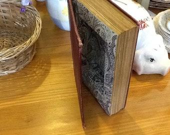 Secret hollow Book