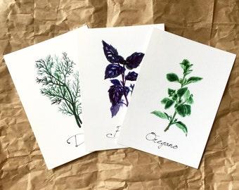 Kitchen Herbs - set of 3 watercolor prints - Dill, Basil, Oregano.