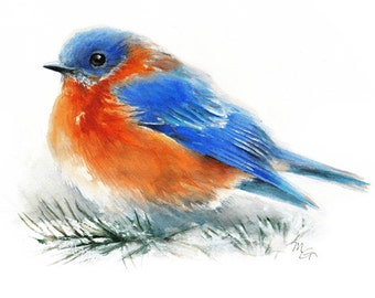 Bluebird watercolor painting. Art Print. Nature or Bird Illustration, Blue and Orange.