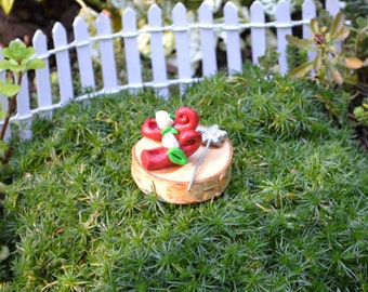 Red Slippers or Shoes with Magic Wand for Fairy Garden