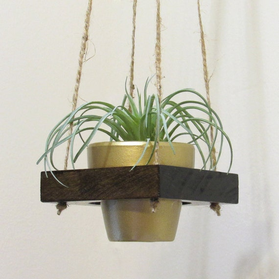 Air Plant Holder Hanging Planter Succulent Pot Modern