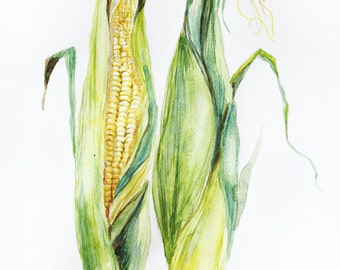 ORIGINAL Watercolor Painting, Corn watercolor, Art decor, Corn with leaves, Home Decor, two corn art, original watercolor art,  Corn OOAK