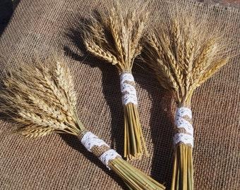 natural wheat dried flowers bouquet ears of triticale dried bunch farmhouse wedding bouquet grain ear rustic home decor natural decor