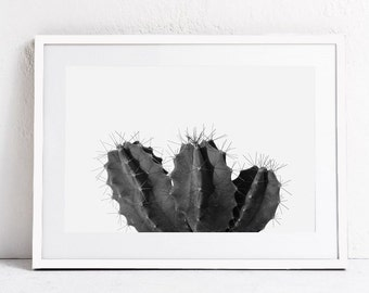 Botanical Print, Black and White Cactus Art, Photo Print INSTANT DOWNLOAD Photography Print, Large Wall Art Print, Horizontal Wall Art 24x36