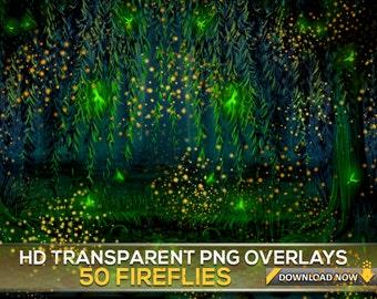 50 TRANSPARENT PNG FIREFLY Overlays, Fireflies Photoshop Overlays, Firefly Light Overlays