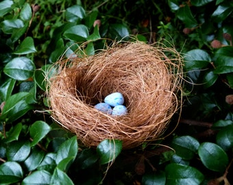 Fairy Garden Bird's Nest, Easter Egg Nest, Egg Hunt Nest, With or Without 3 Polymer Clay Eggs