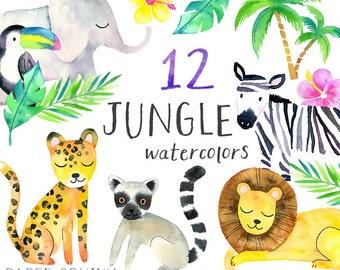 Safari Animals Clipart | Watercolor Jungle Animals Clipart - Safari Lion, Elephant, Toucan, Zebra, Leopard - Instant Download PNG Clip Art